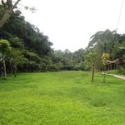 Tanah SHM 2,5 Ha Di Maribaya Lembang Bandung (17477599) di Kab. Bandung