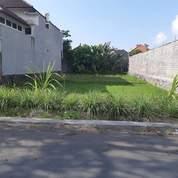 Di Kontrakan Tanah 500 M2 Di Tukad Badung Renon Denpasar Selatan