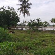 Tanah Bagus Untuk Perumahan Di Sukawangi, Bekasi