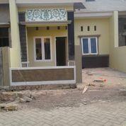 Rumah Minimalis 3 KT 2 KM Bonus Pagar Dan Kanopi Makassar (17577739) di Kota Makassar