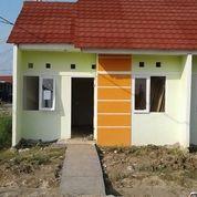 Rumah Subsidi Murah, Di Rengas Dengklok, Tanjung Pura, Karawang Barat (17583643) di Kab. Karawang