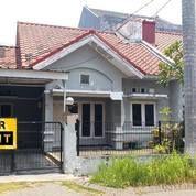 Rumah 1 Lantai Kondisi Kosongan Siap Huni Di Araya, Surabaya (17654391) di Kota Surabaya
