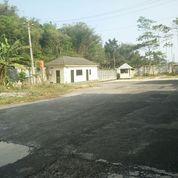 Pabrik Kayu Albasia Barecore Di Temanggung Jawa Tengah (17716795) di Kab. Temanggung