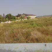 Sedia Tanah Murah Di Pantura Tegal