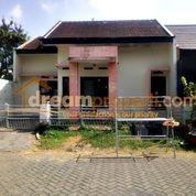 Rumah Lama Perlu Renov Di Permata Jingga Malang (17852823) di Kota Malang