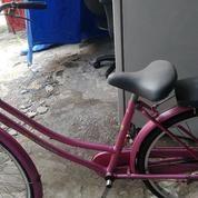"""Sepeda Jenky Cewk Mer Jieyang Pink 24"""""""