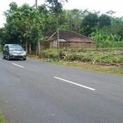 Tanah Strategis Buka Usaha Karanganyar Jateng (17944551) di Kab. Karanganyar