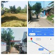 Tanah Sawah 1700m, Dekat Jalan Raya, Strategis Dekat Alun-Alun Baru CIANJUR KOTA (17945067) di Kab. Cianjur