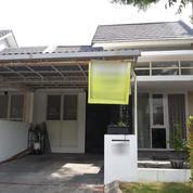 Rumah Bagus Siap Huni, Lingkungan Aman Dan Asri Babatan Pantai, Lokasi Strategis, Surabaya (18079595) di Kota Probolinggo