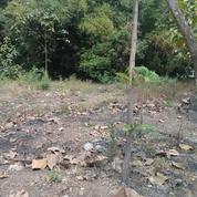 Tanah Kavling Sedapur Klagen Benjeng