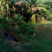 Tanah Kavling Balongpanggang Sederhana