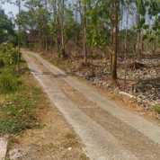 Tanah Kavling Siap Bangun Bareng Jombang