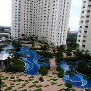 Apartemen Dengan Harga Murah Di Pakuwon City Dengan Pemandangan Indah, Surabaya