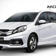 Honda Mobilio Tegal