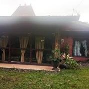Villa Komersial Kaliurang Jogja (18408139) di Kab. Sleman