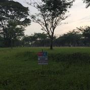 Tanah Kavling Murah Banget Cluster Kusuma Dwipa Citra Raya (18487071) di Kab. Lebak