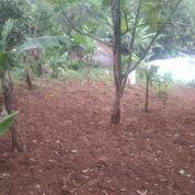 Siap Dipesan Tanah Murah Nego Bebas Banjir Jalan Raya Punclut Ciumbuleuit (18564867) di Kota Bandung