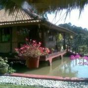 Rumah Villa Di Loji Curug Karawang (18588395) di Kab. Karawang
