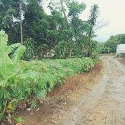 Tanah Cocok Untuk Outbond, Villa Dan Rekreasi