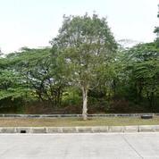 Tanah Industri Di Kawasan Industri Jababeka 6 Cikarang Utara (18653211) di Kab. Bekasi