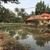 Tanah Luas Dan Villa Kolam