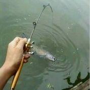 Alat Pancing Portable Bentuk Pulpen 1m / Joran Mini Portable Extreme Pen Fishing Rod Length 1 M (18728567) di Kota Jakarta Barat
