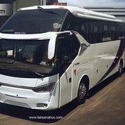 Hino Big Bus Luxury (18818155) di Kota Jakarta Utara