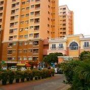 Kios Apartemen City Resort Tower Bougenville (Ukuran 8,2x10 M) (18859251) di Kota Jakarta Barat