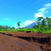Tanah Kavling Prispektif Karangploso (18881651) di Singosari