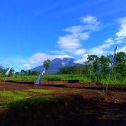 Tanah Kavling Karangploso3 (18890671) di Singosari
