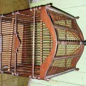 Kurungan Burung Ex. Yorksier (18923379) di Kota Yogyakarta