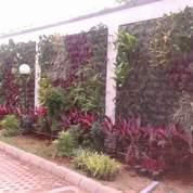 TUKANG TAMAN TANGERANG 081346642094 (18938147) di Pondok Aren