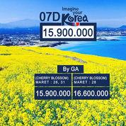 Paket Tour 7 Hari Korea Jeju Island Plus Canola Field Dan Cherry Blossom (19036711) di Kota Jakarta Pusat