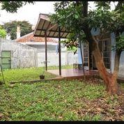 Rumah Area Ciputat Strategis Untuk Usaha Kos BEST PRICE (19044927) di Kota Tangerang Selatan