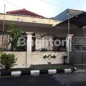 Rumah 1 Lantai Sutorejo Prima Utara