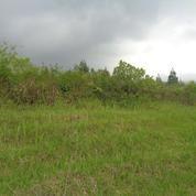 Tanah 7000m Poncokusumo Tumpang Malang (19069591) di Kab. Malang