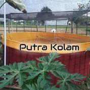 KOMPLIT Kolam Bundar Diameter 1,5m (19086083) di Kota Yogyakarta