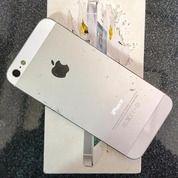 Iphone 5 16 GB Mulus Dan Tidak Minus (19113583) di Kota Bogor