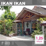 Rumah Luas 183 Di Ikan Ikan Kemirahan Blimbing Kota Malang _ 91.19