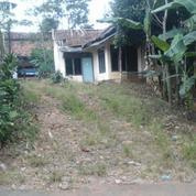 Tanah & Bangunan Kandang Ternak Ayam 900 M2 Bojong Purwakarta (19158675) di Kab. Purwakarta