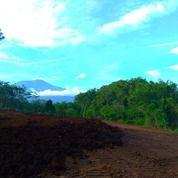 Tanah Kavling Karangploso (19171355) di Singosari