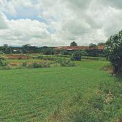 Tanah Strategis Di Pinggir Jalan Salabenda Kemang Bogor