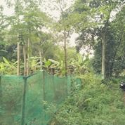 Tanah Perkampungan Jl Diklat Pemda Kp Duku Pinang Bojong Nangka Kelapa Dua (19467379) di Kab. Tangerang