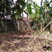 Tanah Pekarangan (19670351) di Kota Yogyakarta