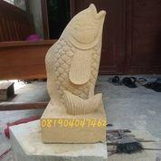 Patung Ikan Dari Batu Putih/Batu Alam (19714247) di Kota Gunungkidul