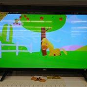 TV LED LG 49 Inch
