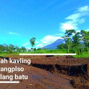 Tanah Kainv Syariah Karangploso (19750035) di Singosari