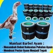 Barbel Ayam 200 Gr