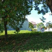 (JA) Tanah Citraland Barang Langka Lokasi Depan Bisa Buat Komersial (19815199) di Kota Surabaya