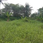Tanah Luas Harga Murah Tengah Kota Bogor